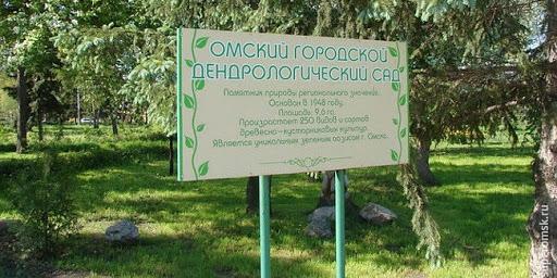 Омский Дендросад хотят превратить в «Зарядье»