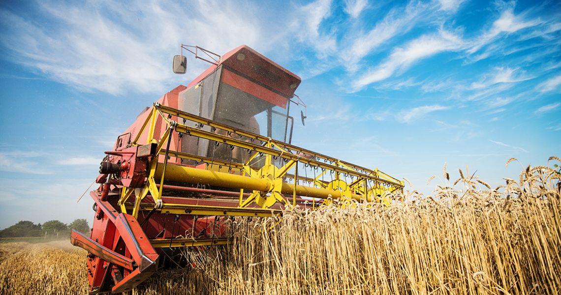 Первая аграрная премия… А зачем она нужна?