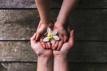 Детско-родительский коучинг – зачем он нужен?