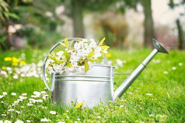 Готовимся к весне: 10 способов быстро навести чистоту и украсить дом