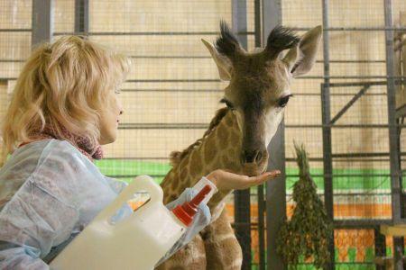 Зоопарк в Тюменской области начал распродажу животных