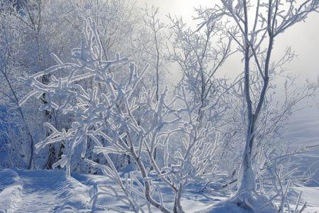 В Омске ожидаются холода до -30.