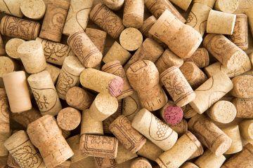 Вино как философский продукт