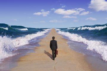 Продвижение бизнеса: взгляд изнутри